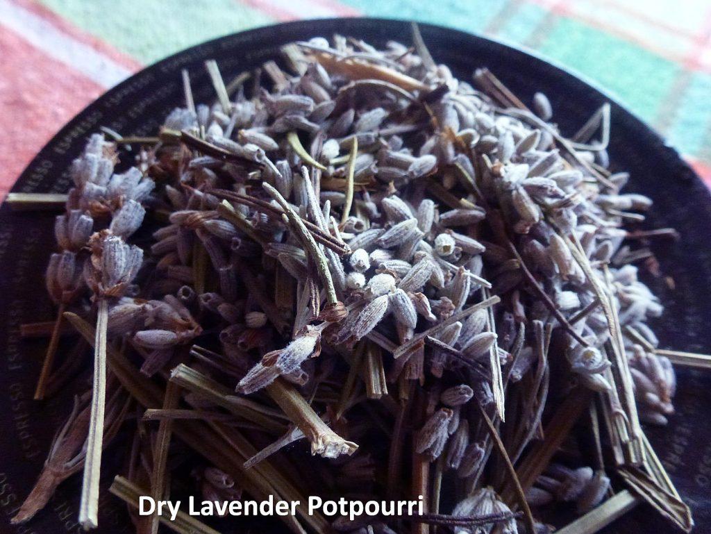 Dry Lavender potpourri