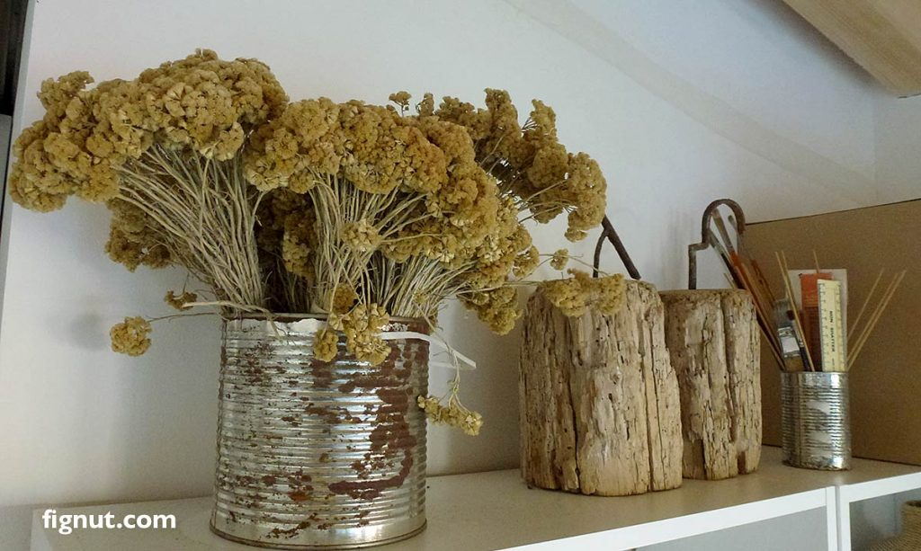 dried immortelle flowers as a decoration