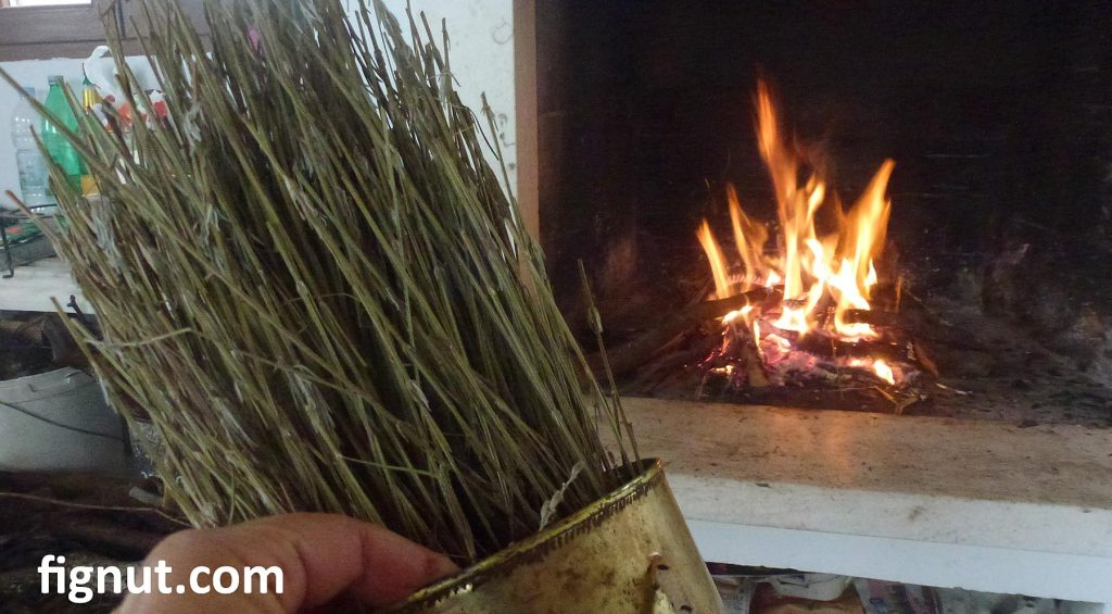 My fireplace and lavender stems used as fire starters