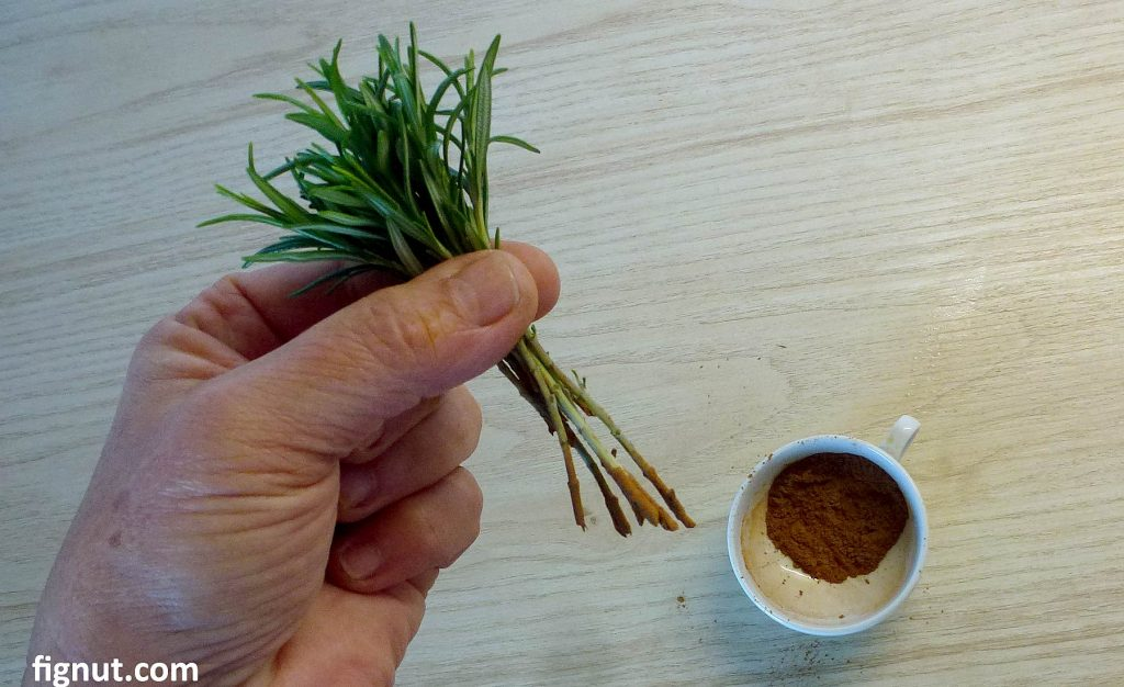 Use cinnamon as a rooting hormone