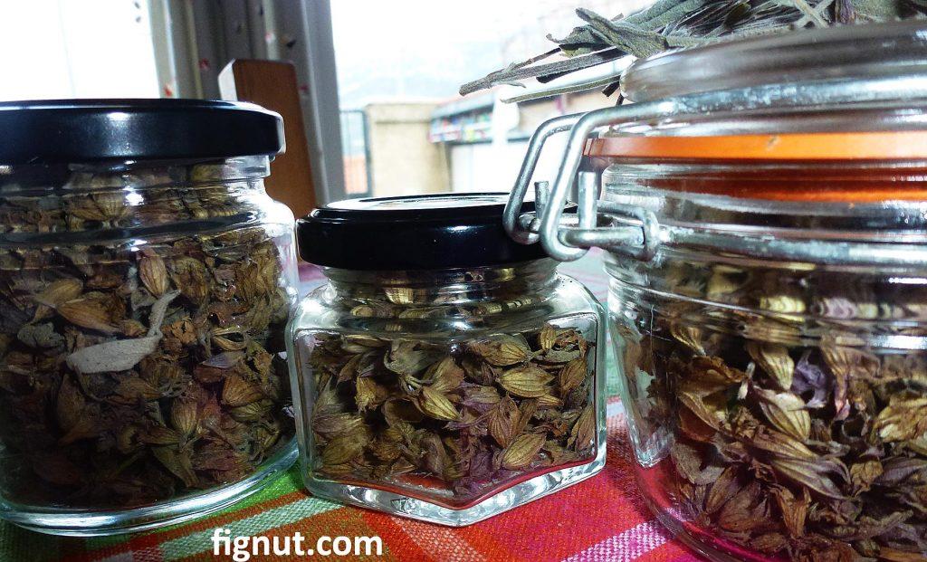 My dried sage flowers